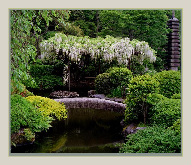Pin le jardin et la serre on pinterest for Jardin japonais yvelines