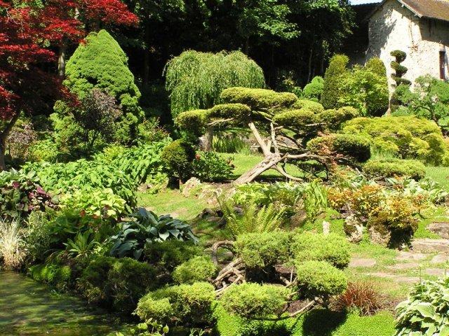 Arbres decoratifs jardin jardin de la p foli re balades for Jardins decoratifs