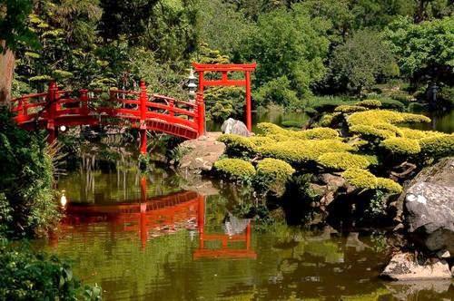 Jardins d 39 inspiration japonaise for Beaux arbres de jardin